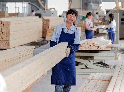 Chinese furniture industry explores possibilities with Swedish pine