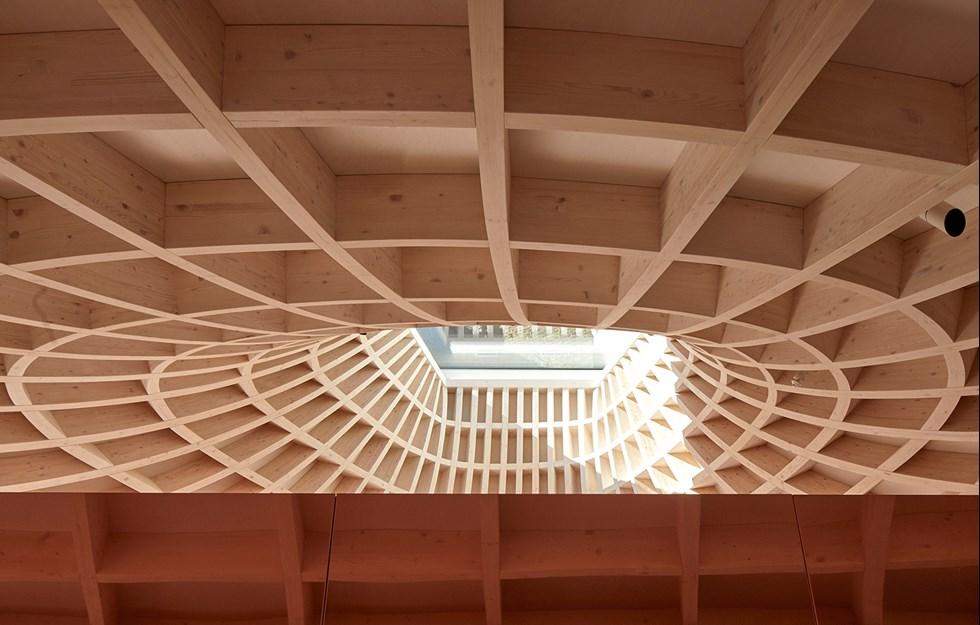 Glulam structure defines pavilion